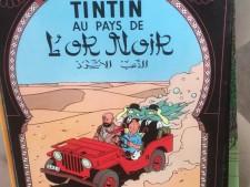 Fumetti usati le avventure di Tin Tin a Treviso