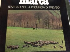 Libri su Treviso e Sile usati a Treviso