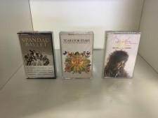 Audio cassette usate a Treviso